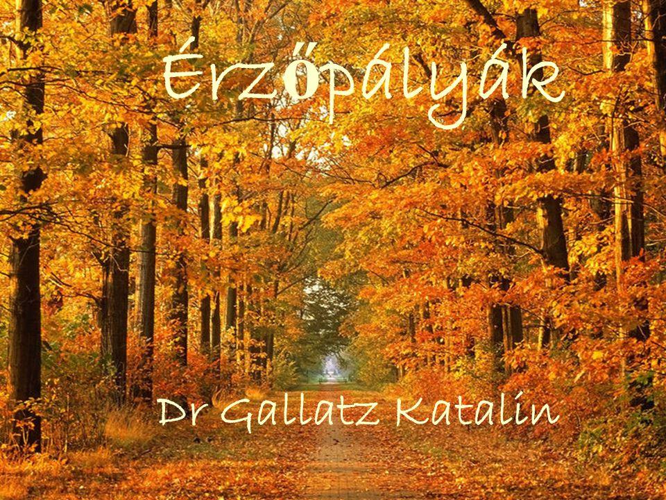Érzőpályák Dr Gallatz Katalin