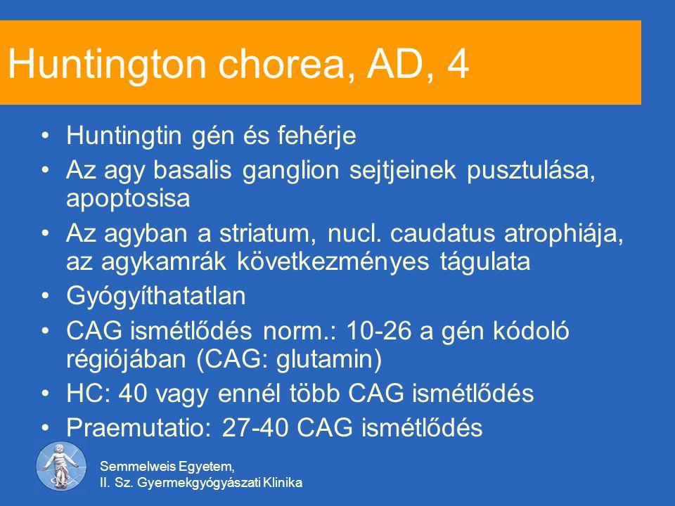 Huntington chorea, AD, 4 Huntingtin gén és fehérje