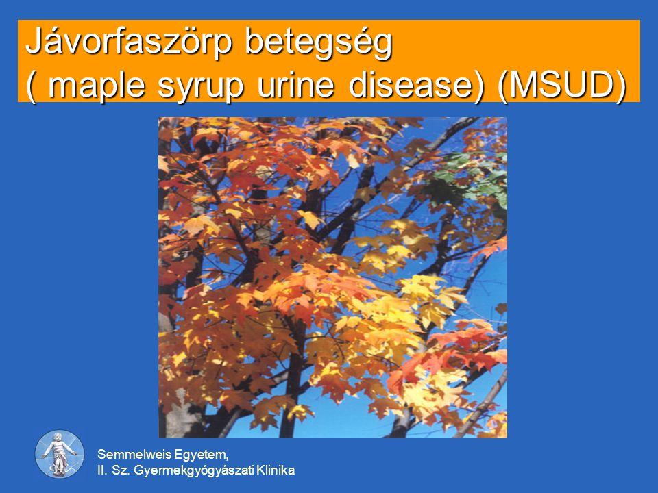 Jávorfaszörp betegség ( maple syrup urine disease) (MSUD)