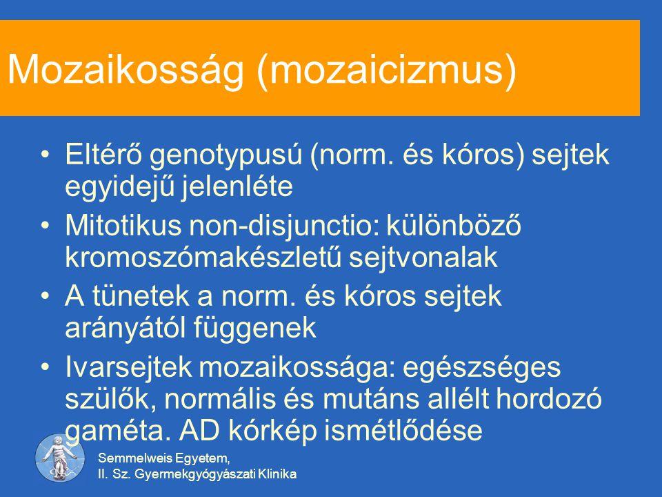 Mozaikosság (mozaicizmus)