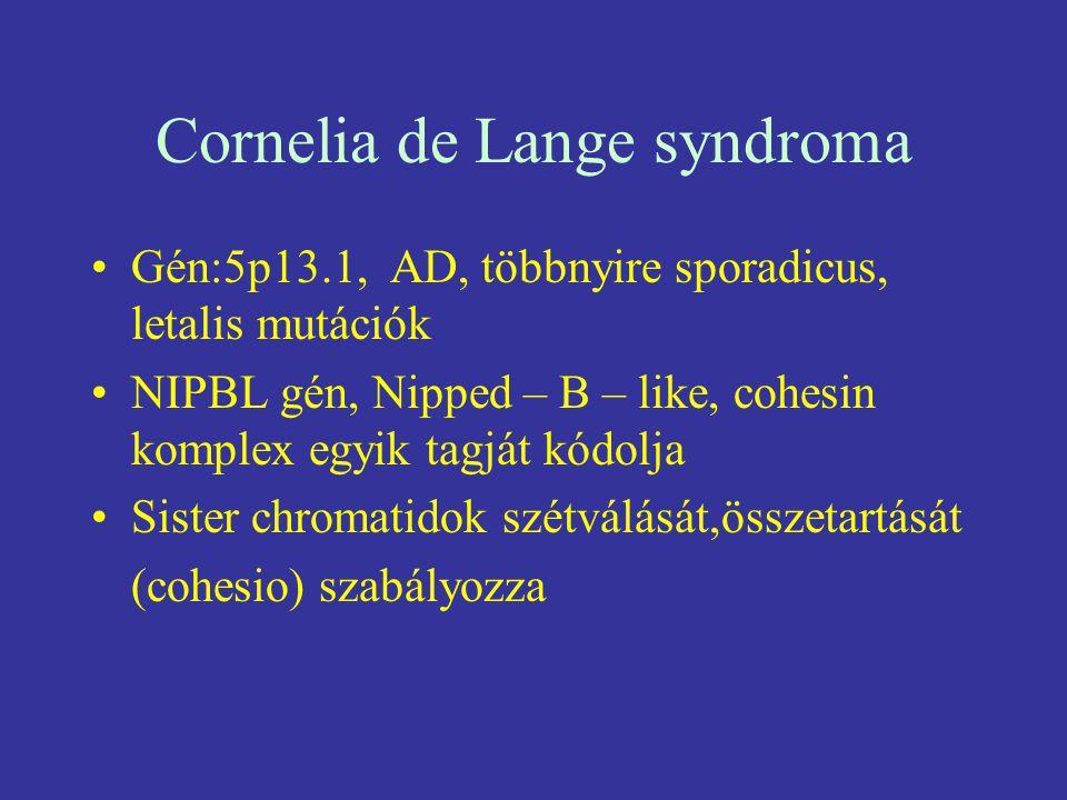 Cornelia de Lange syndroma
