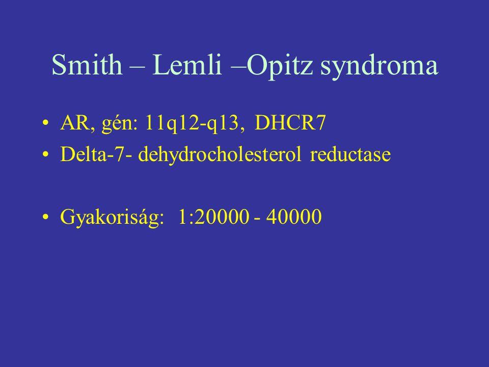 Smith – Lemli –Opitz syndroma