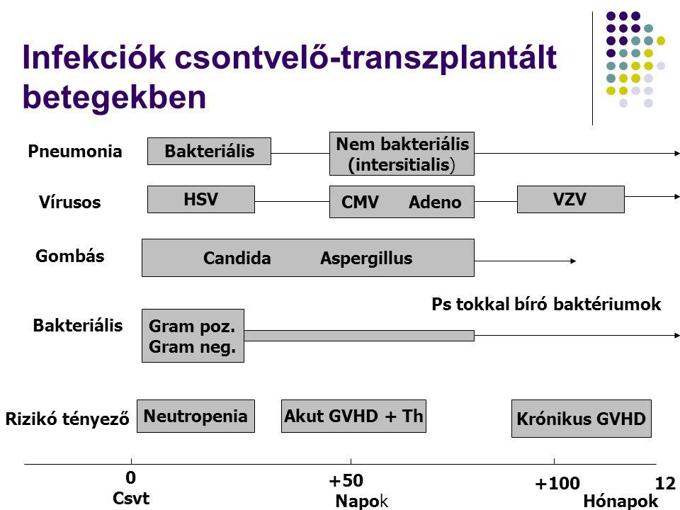 Infekciók csontvelő-transzplantált betegekben