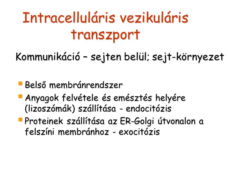 Intracelluláris vezikuláris transzport