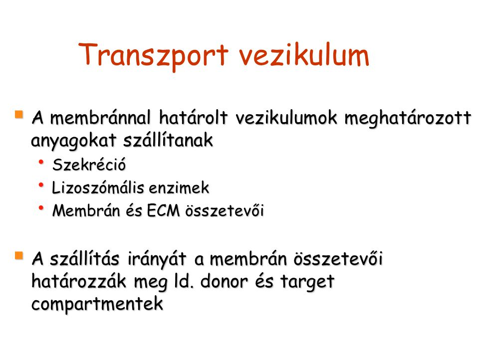Transzport vezikulum A membránnal határolt vezikulumok meghatározott anyagokat szállítanak. Szekréció.