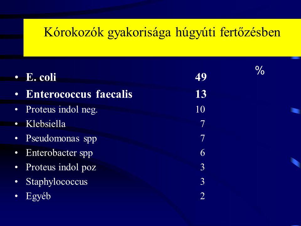 Kórokozók gyakorisága húgyúti fertőzésben