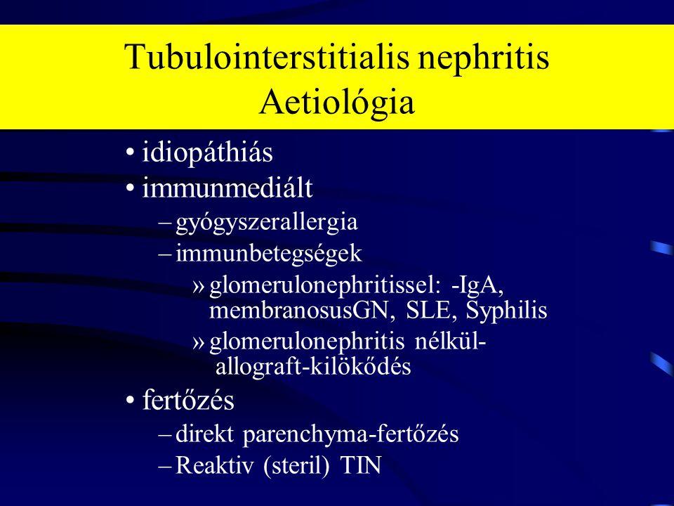 Tubulointerstitialis nephritis Aetiológia