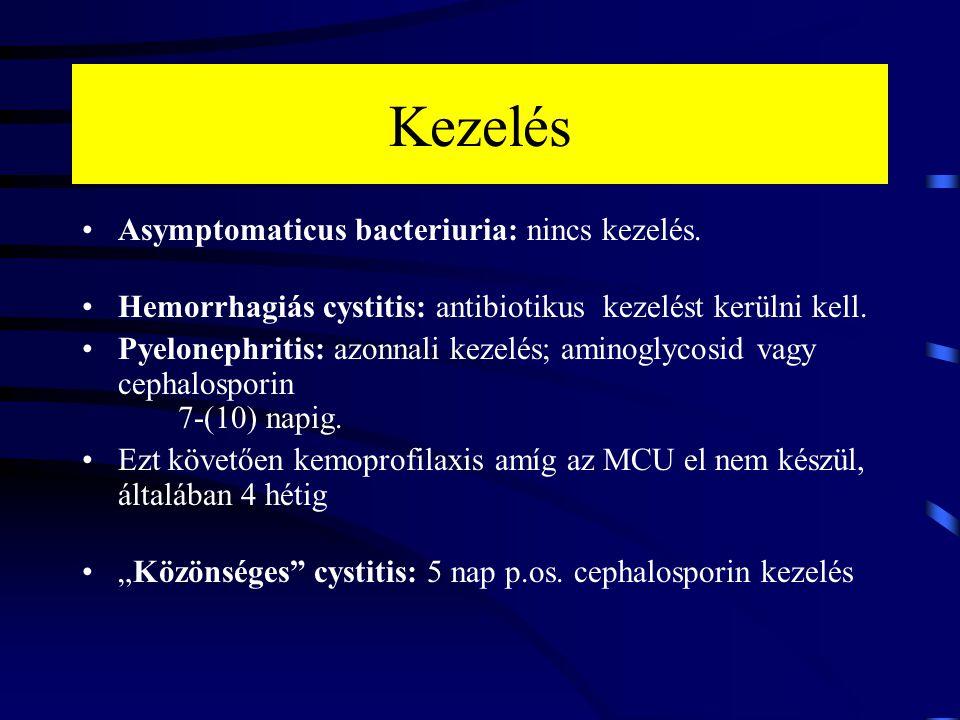 Kezelés Asymptomaticus bacteriuria: nincs kezelés.
