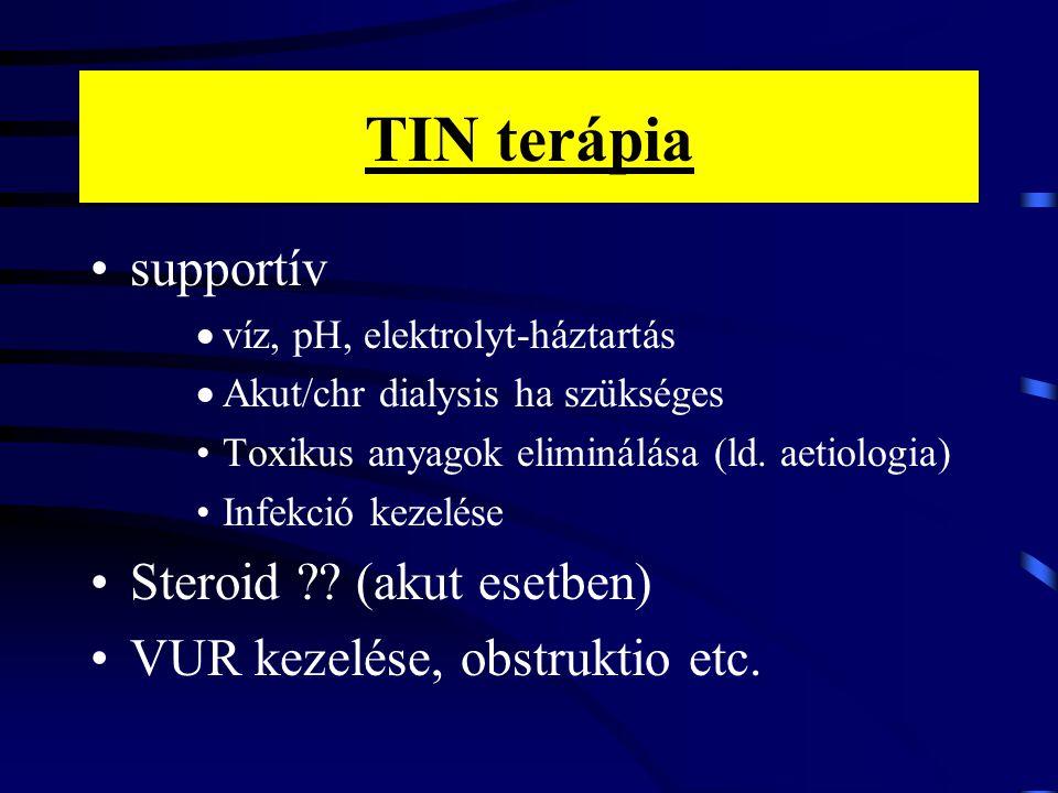 TIN terápia supportív Steroid (akut esetben)