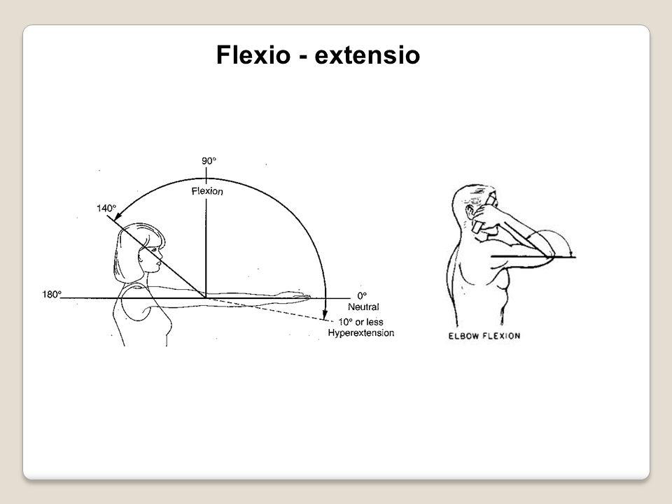 Flexio - extensio