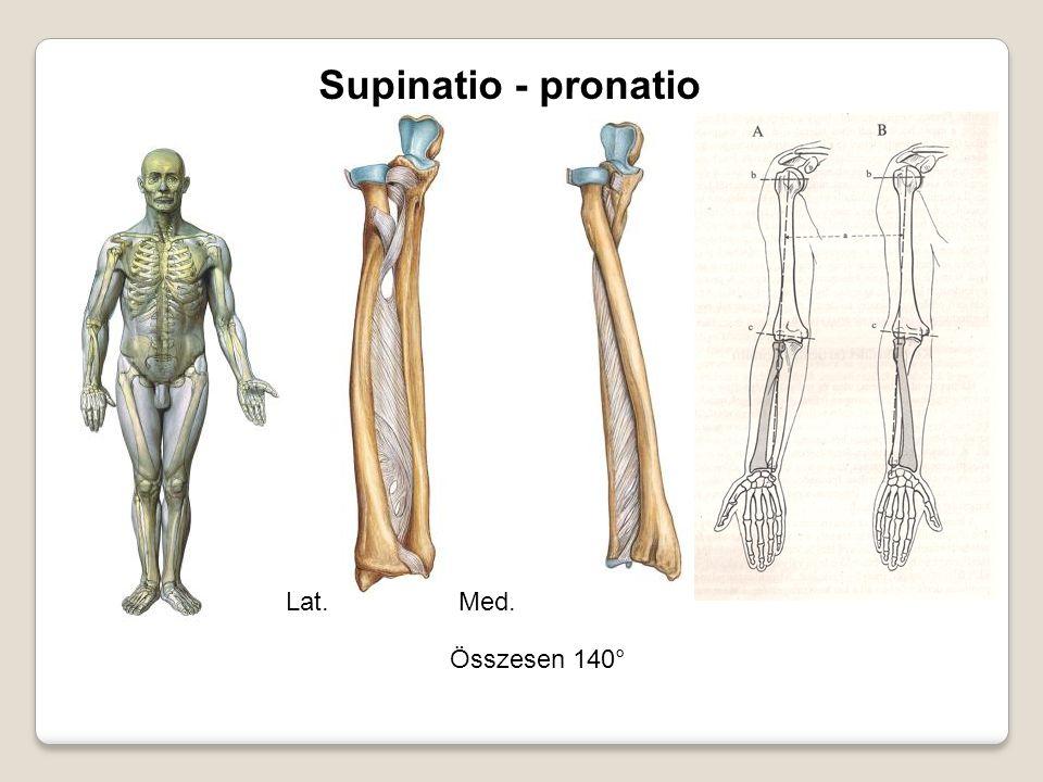 Supinatio - pronatio Lat. Med. Összesen 140°