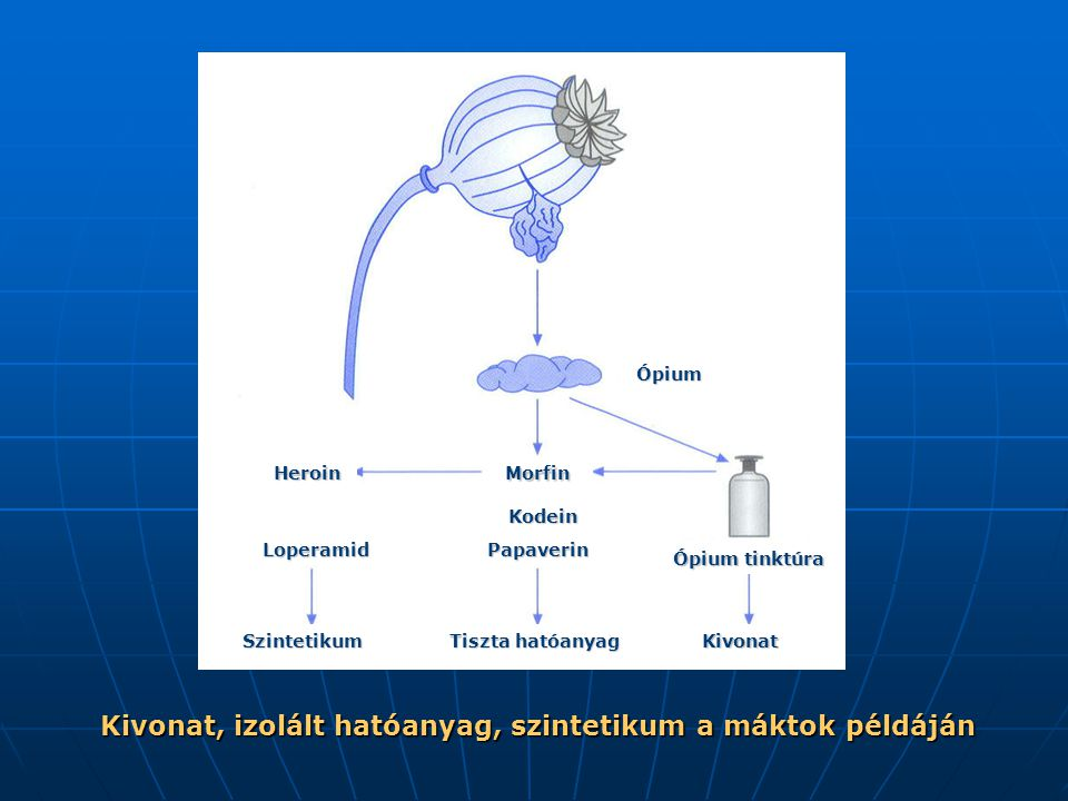 Kivonat, izolált hatóanyag, szintetikum a máktok példáján