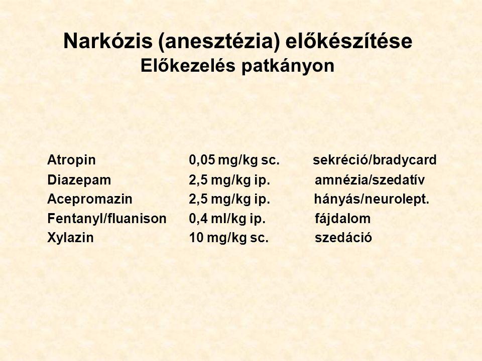 Narkózis (anesztézia) előkészítése Előkezelés patkányon