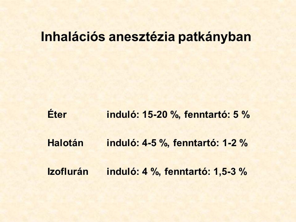 Inhalációs anesztézia patkányban