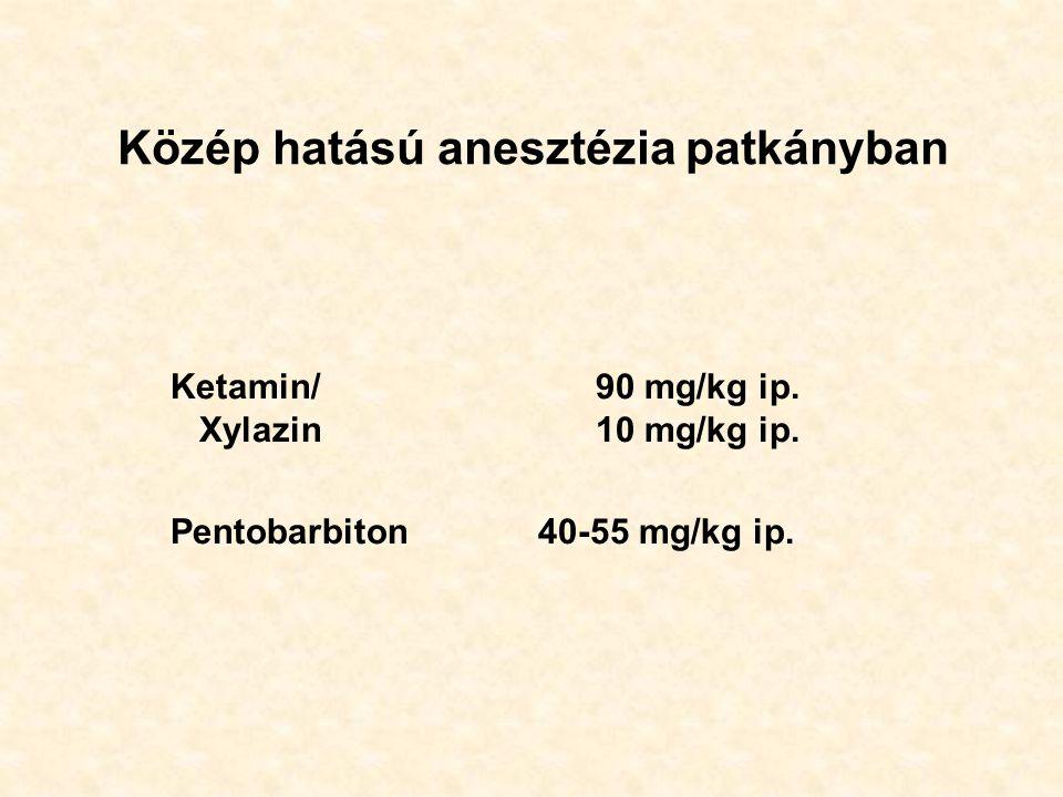 Közép hatású anesztézia patkányban