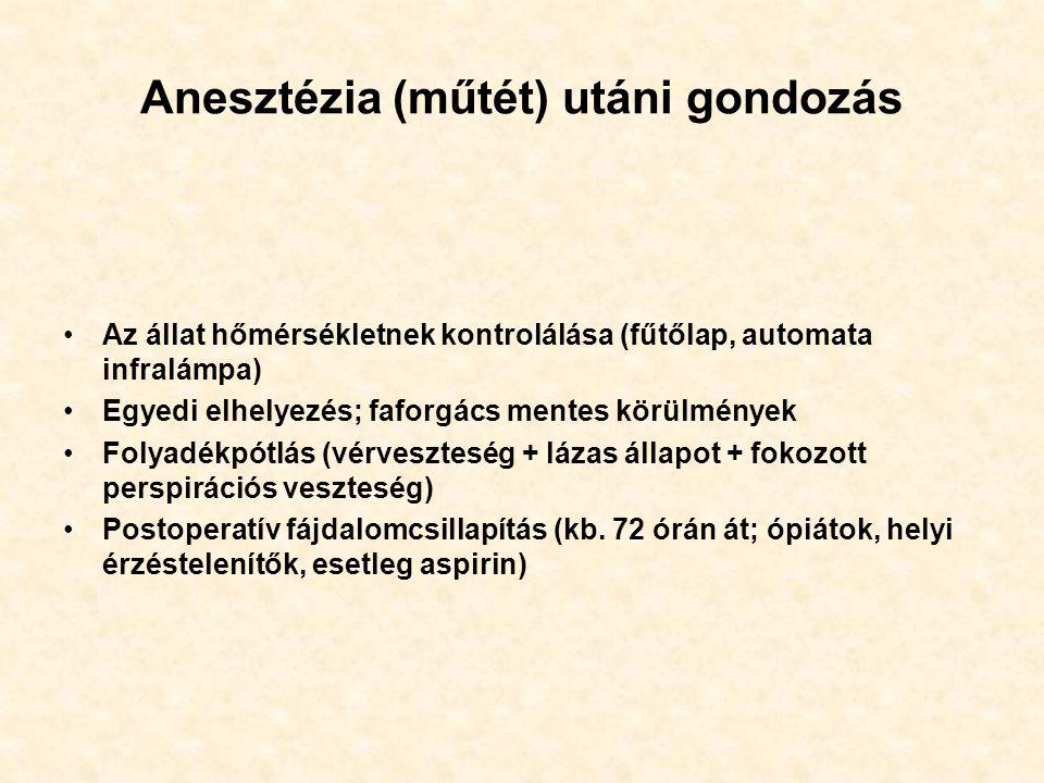 Anesztézia (műtét) utáni gondozás