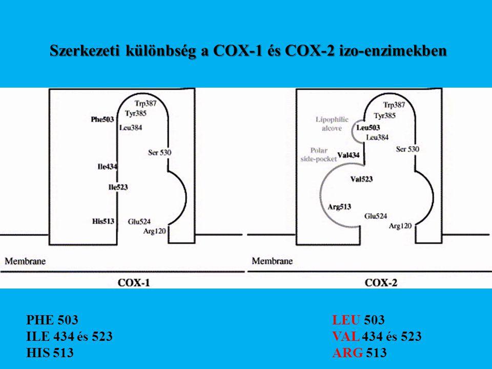 Szerkezeti különbség a COX-1 és COX-2 izo-enzimekben