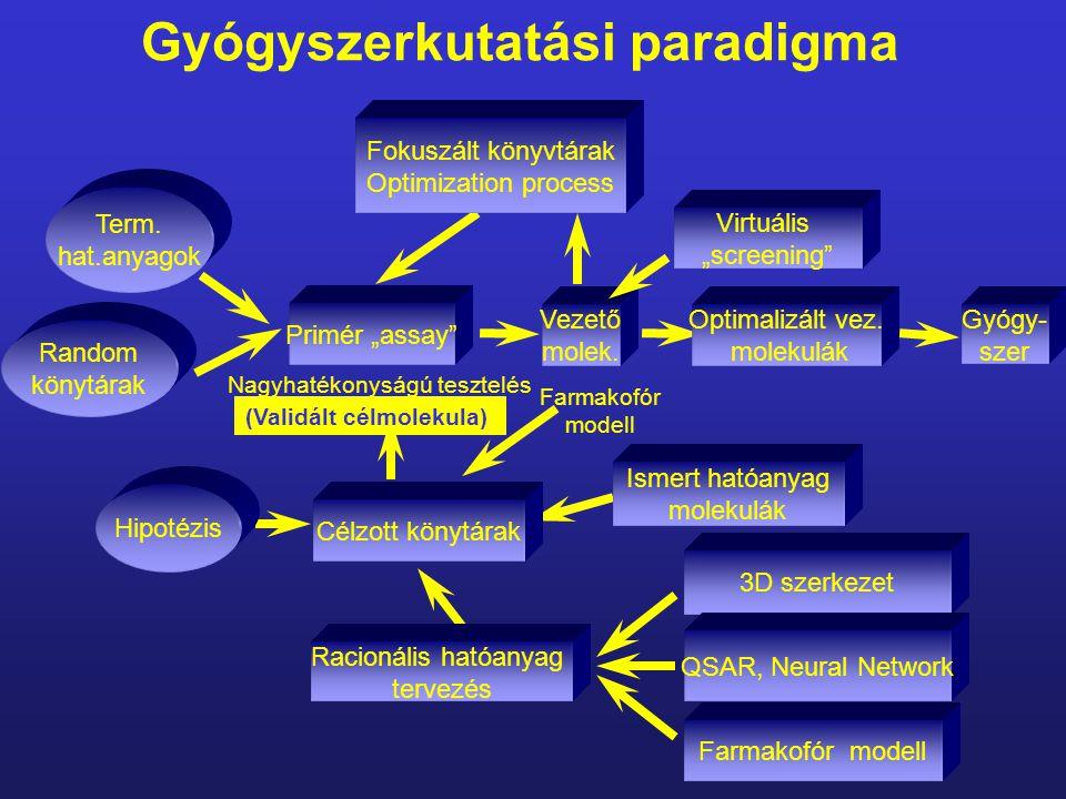 Gyógyszerkutatási paradigma