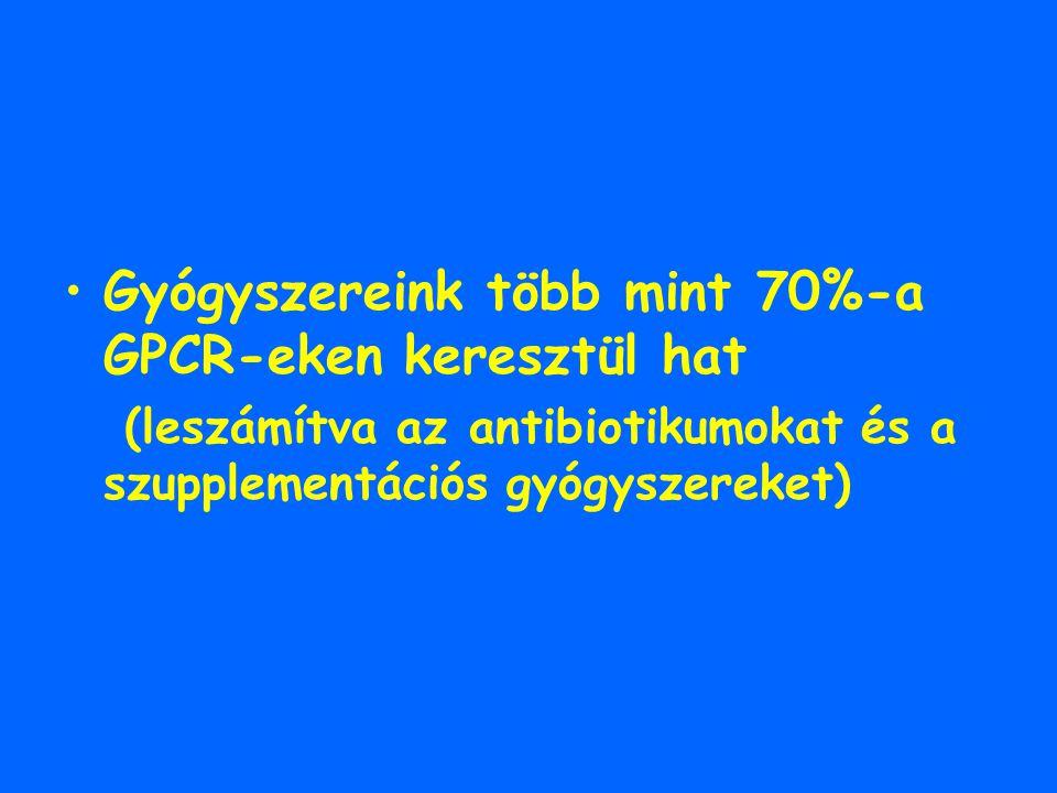 Gyógyszereink több mint 70%-a GPCR-eken keresztül hat
