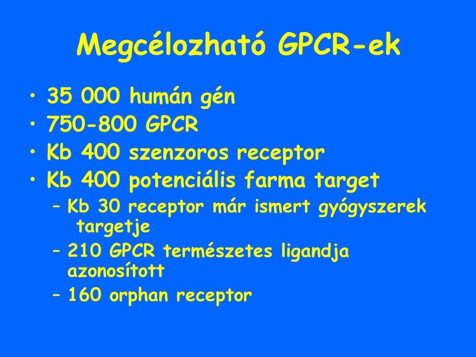 Megcélozható GPCR-ek 35 000 humán gén 750-800 GPCR