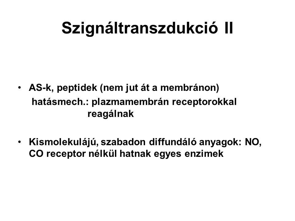 Szignáltranszdukció II