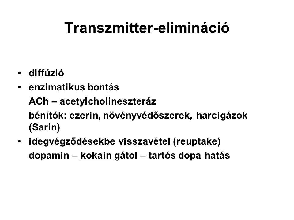 Transzmitter-elimináció