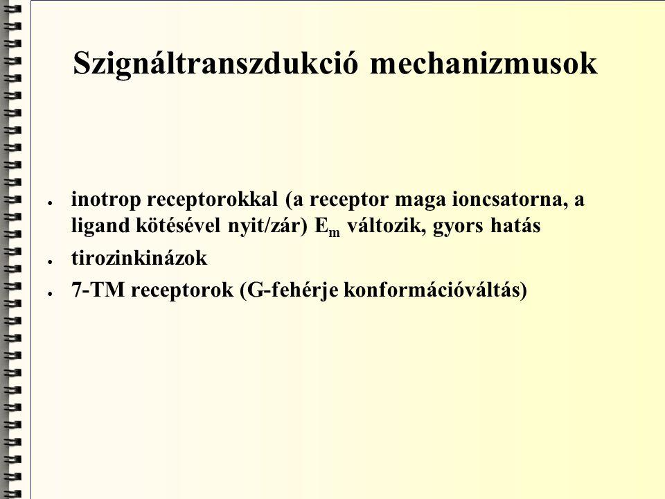 Szignáltranszdukció mechanizmusok