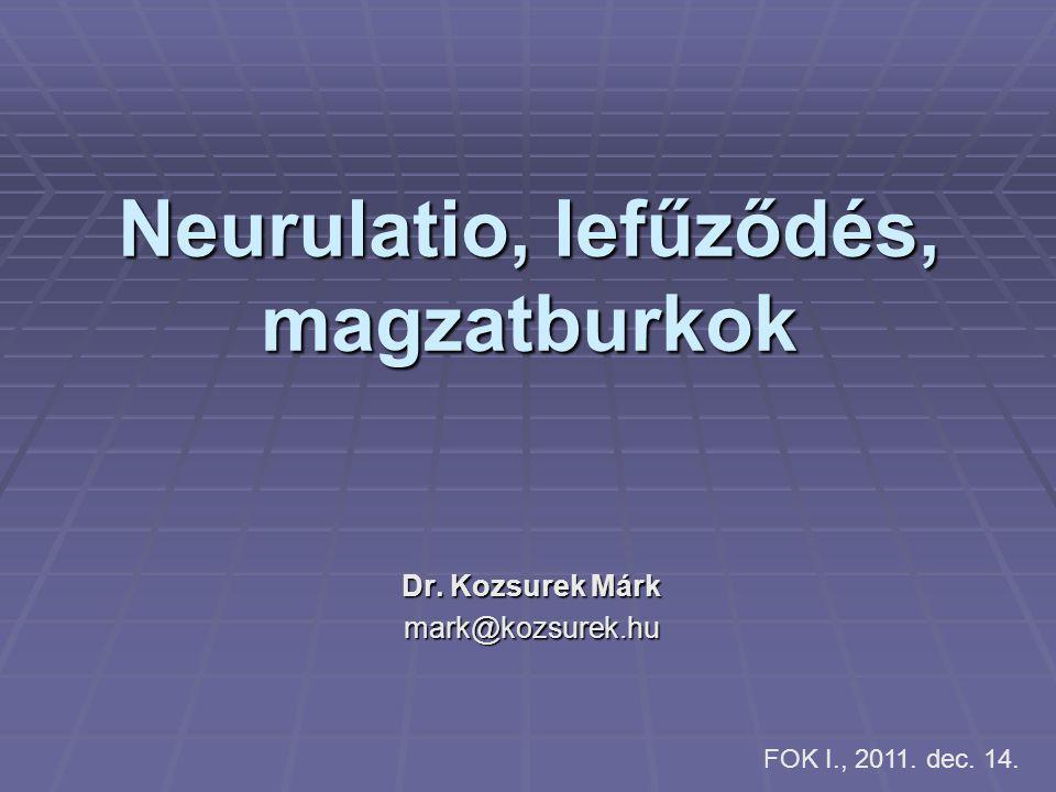 Neurulatio, lefűződés, magzatburkok