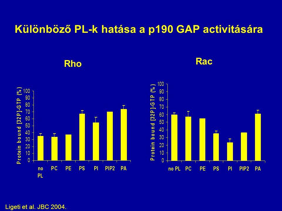 Különböző PL-k hatása a p190 GAP activitására