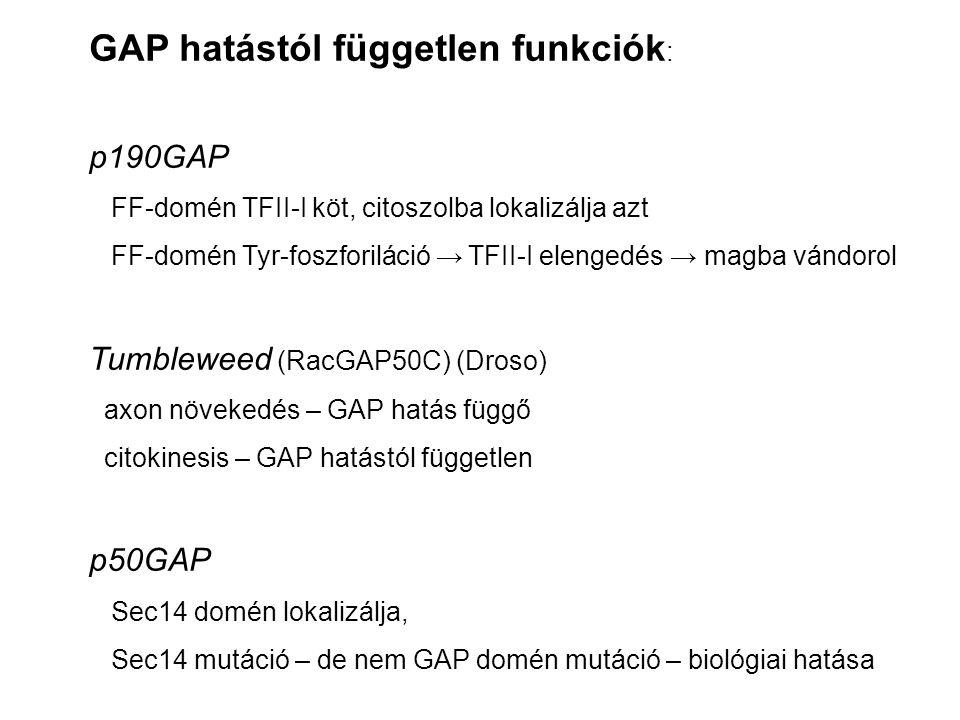 GAP hatástól független funkciók: