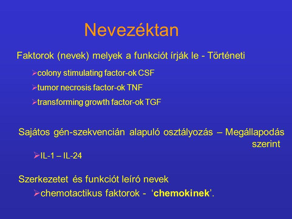 Nevezéktan Faktorok (nevek) melyek a funkciót írják le - Történeti