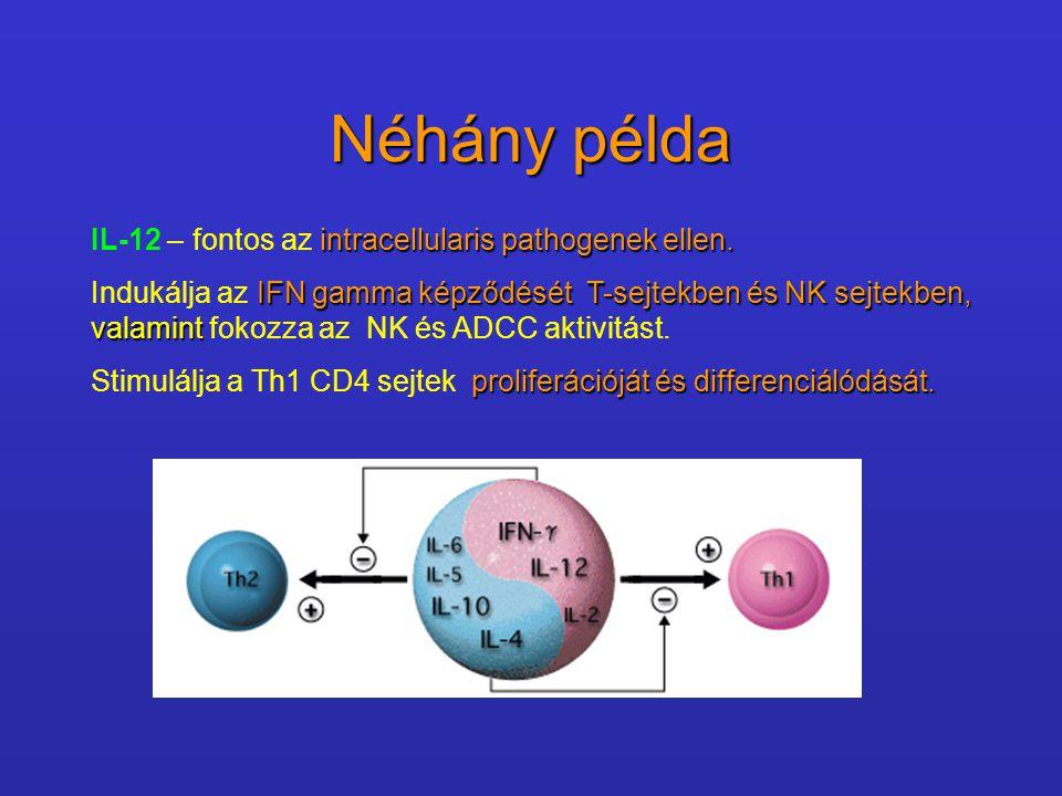 Néhány példa IL-12 – fontos az intracellularis pathogenek ellen.