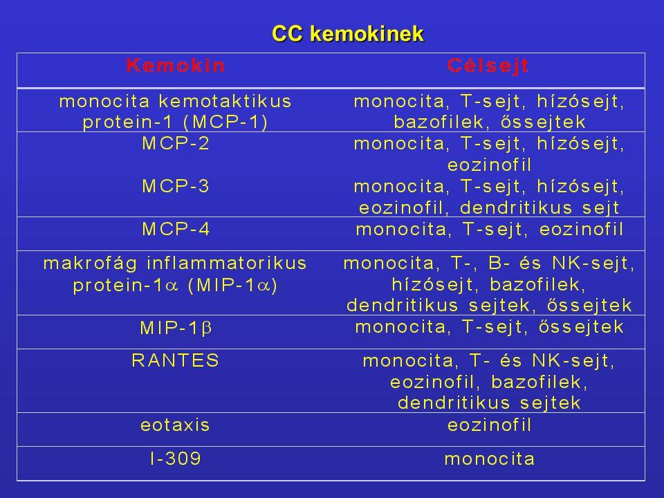 CC kemokinek