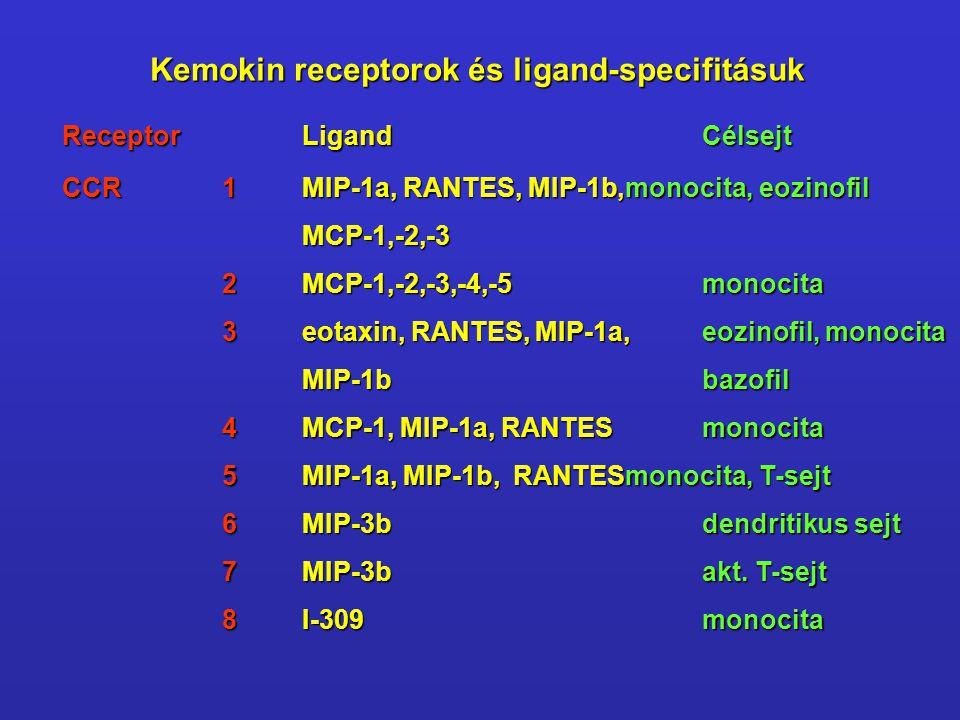 Kemokin receptorok és ligand-specifitásuk