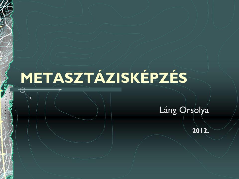 METASZTÁZISKÉPZÉS Láng Orsolya 2012.