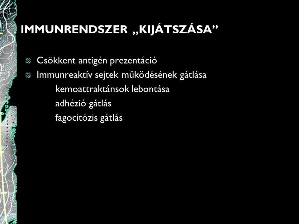 """IMMUNRENDSZER """"KIJÁTSZÁSA"""