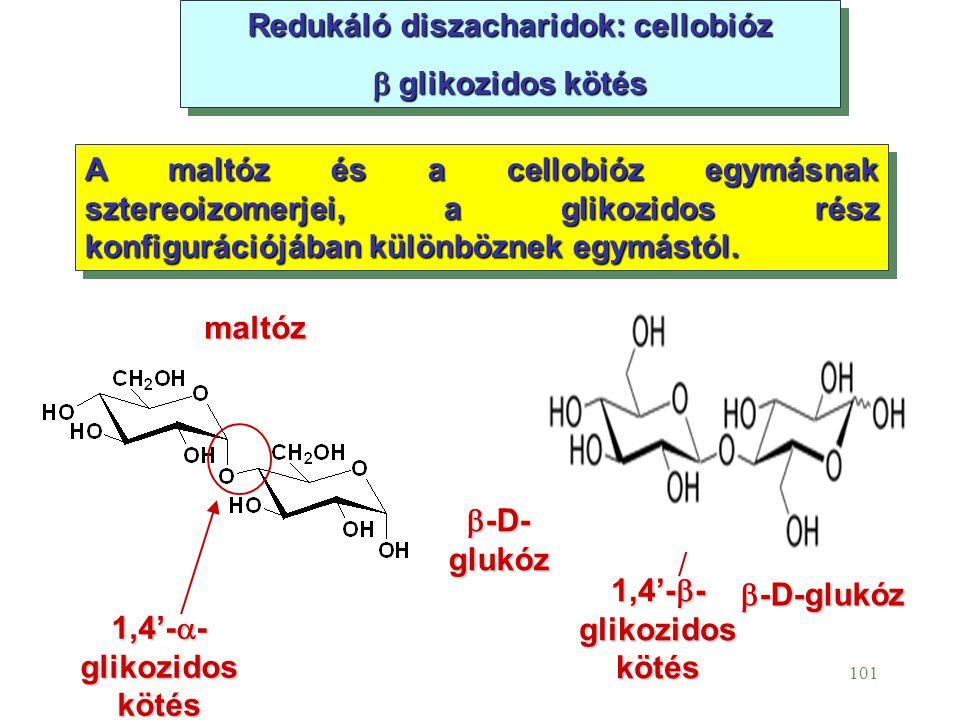 Redukáló diszacharidok: cellobióz
