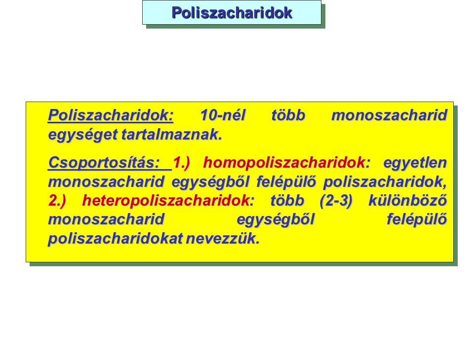 Poliszacharidok Poliszacharidok: 10-nél több monoszacharid egységet tartalmaznak.
