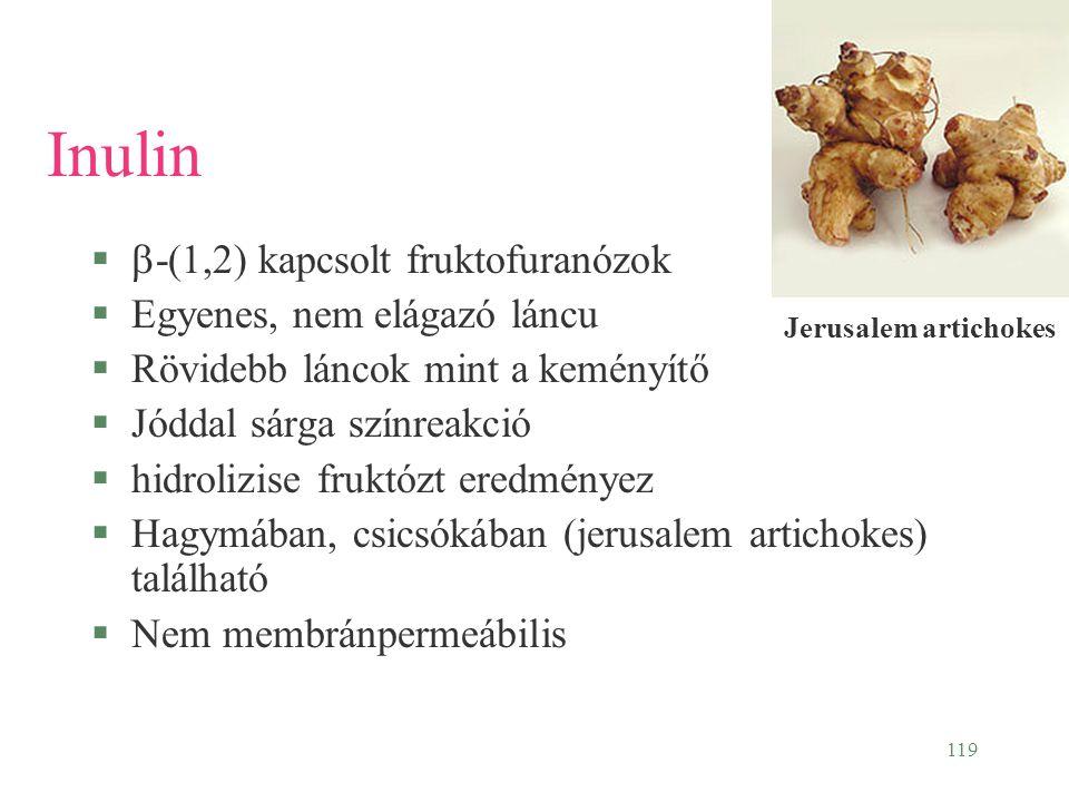 Inulin b-(1,2) kapcsolt fruktofuranózok Egyenes, nem elágazó láncu