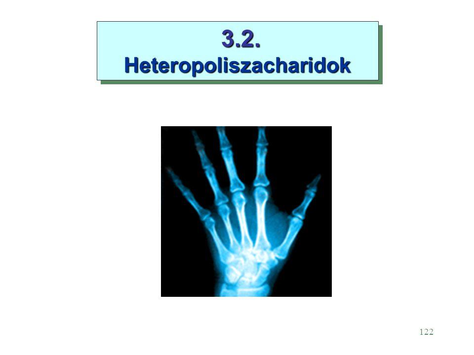 3.2. Heteropoliszacharidok