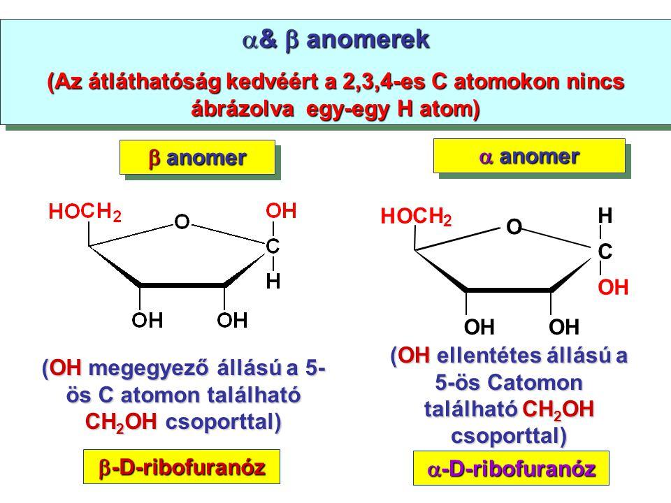&  anomerek (Az átláthatóság kedvéért a 2,3,4-es C atomokon nincs ábrázolva egy-egy H atom)  anomer.