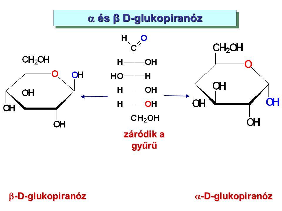  és β D-glukopiranóz záródik a gyűrű b-D-glukopiranóz