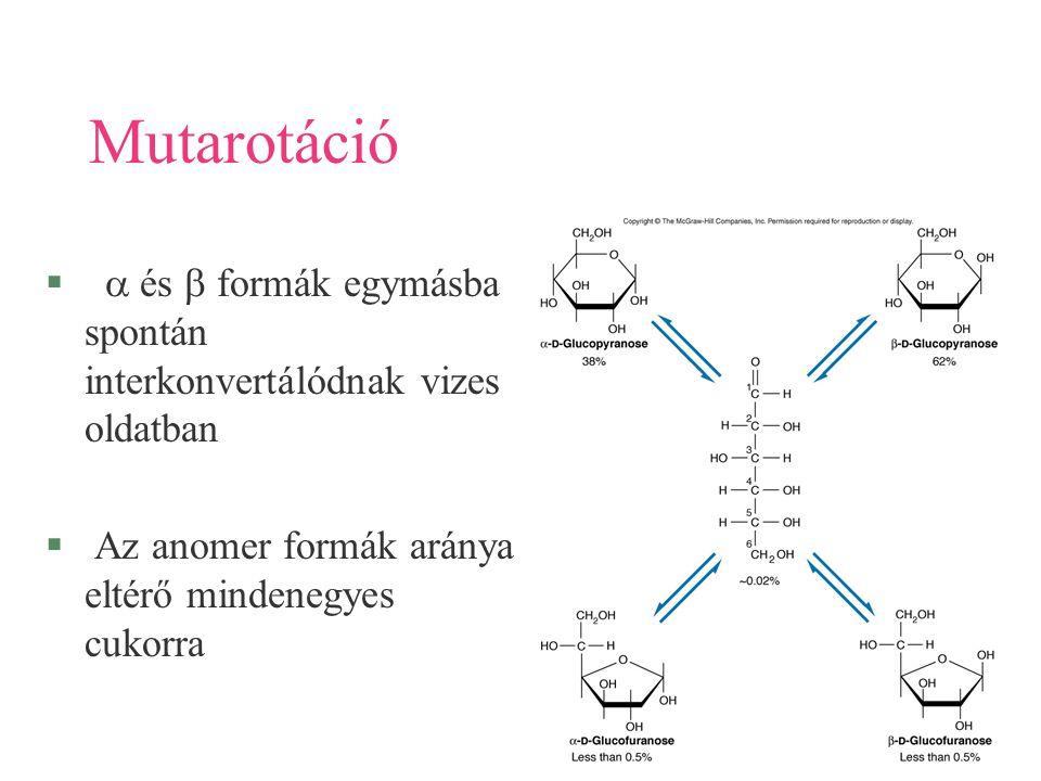 Mutarotáció a és b formák egymásba spontán interkonvertálódnak vizes oldatban.