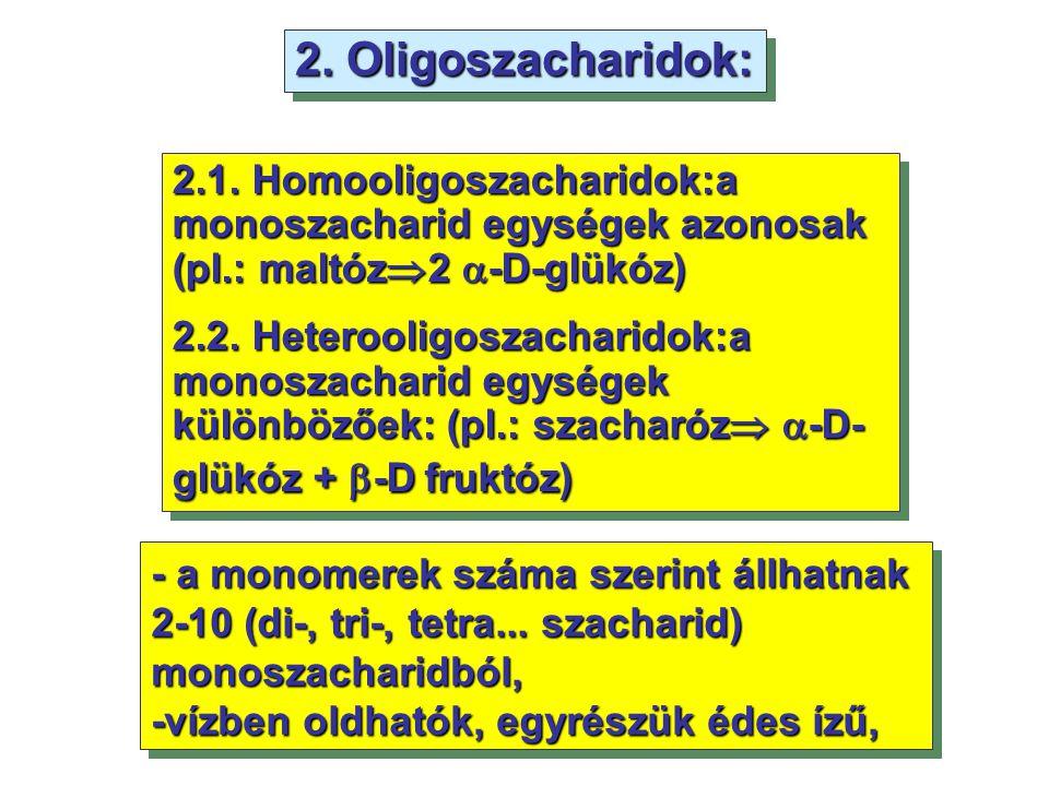 2. Oligoszacharidok: 2.1. Homooligoszacharidok:a monoszacharid egységek azonosak (pl.: maltóz2 -D-glükóz)