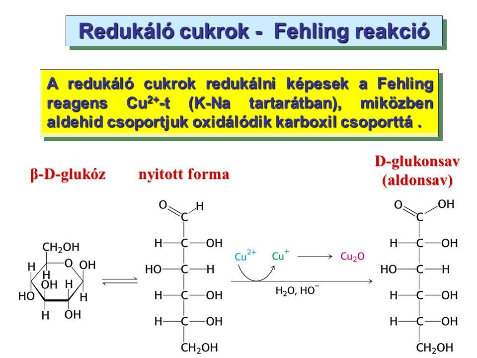 Redukáló cukrok - Fehling reakció