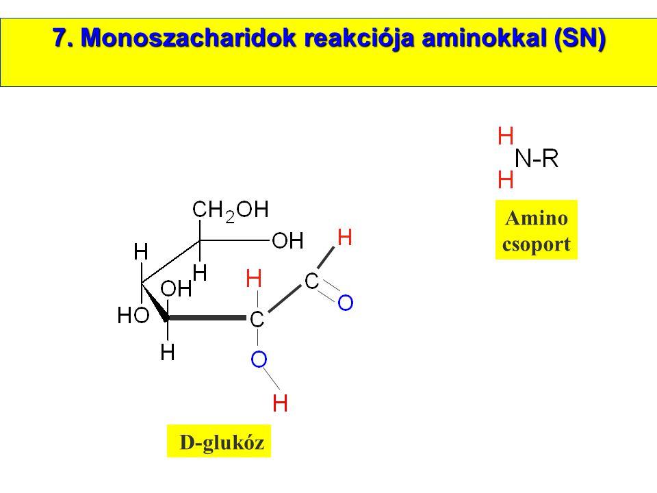 7. Monoszacharidok reakciója aminokkal (SN)