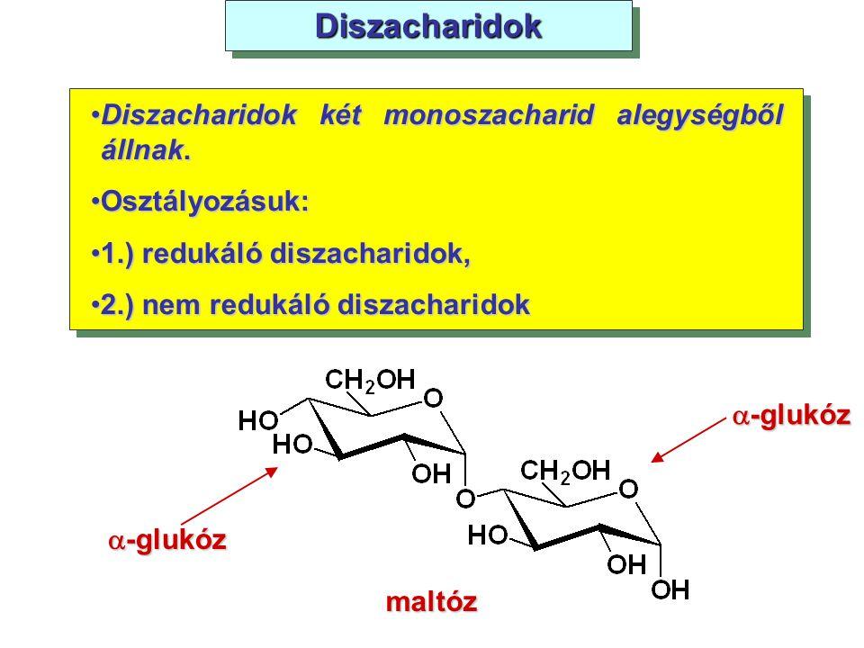 Diszacharidok Diszacharidok két monoszacharid alegységből állnak.