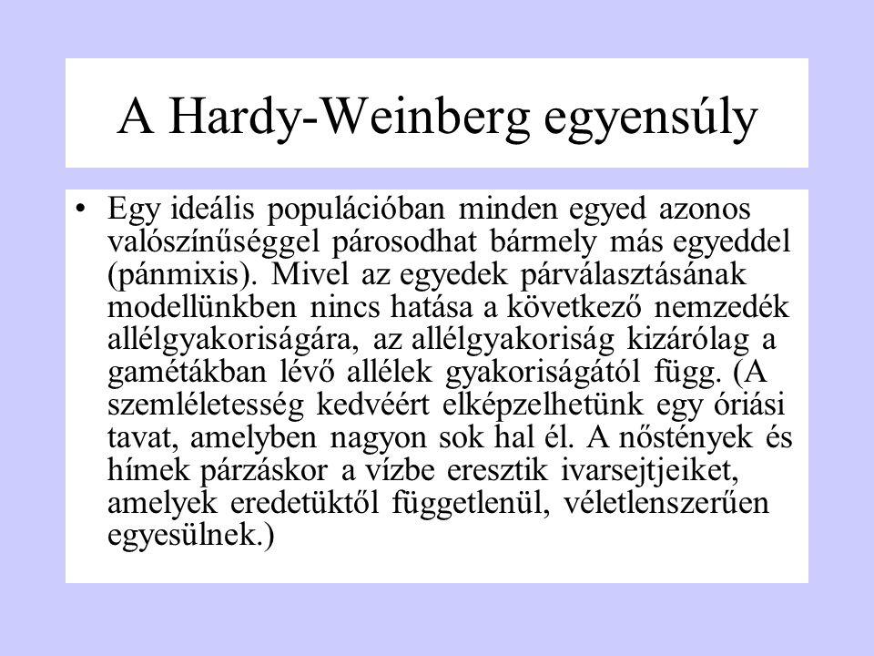 A Hardy-Weinberg egyensúly