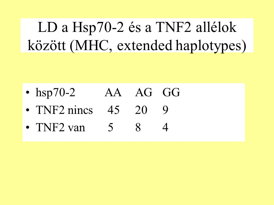 LD a Hsp70-2 és a TNF2 allélok között (MHC, extended haplotypes)