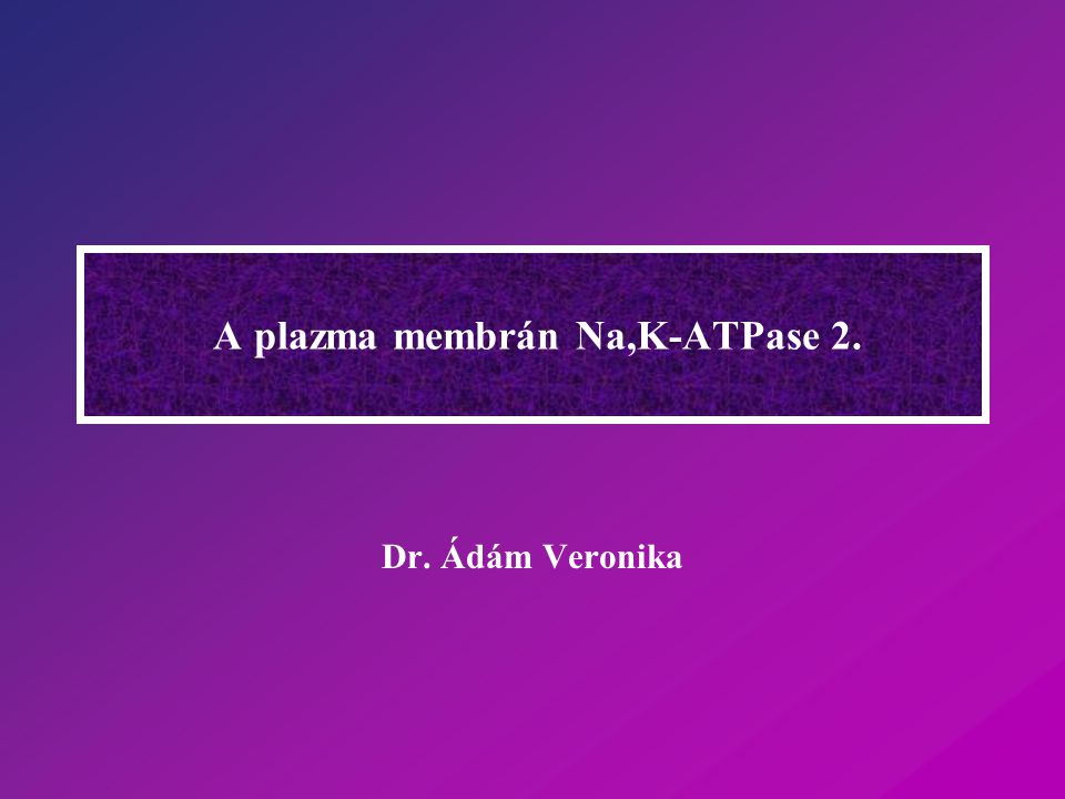 A plazma membrán Na,K-ATPase 2.